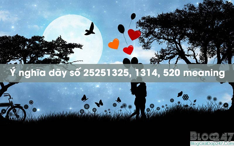 y-nghia-day-so-25251325-1314-520-meaning